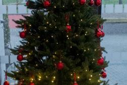 Julen i Norkirken